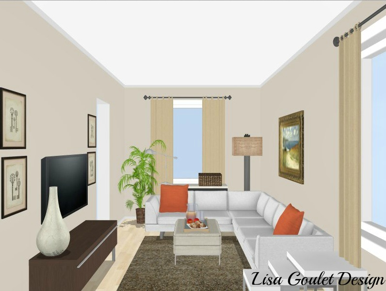 long narrow living room - design option
