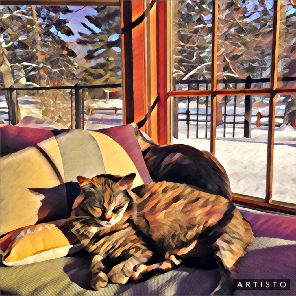 LOG HOME CAT